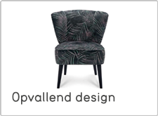 Leen Bakker Coussins fauteuils eye catchers