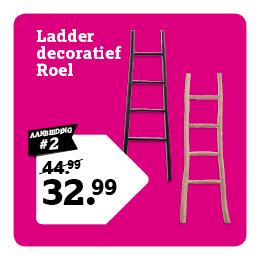 Ladder decoratief Roel