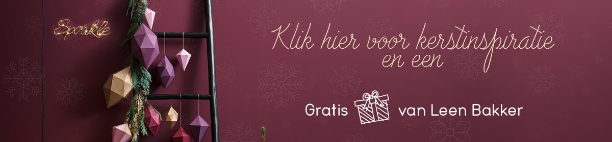 Vind jouw kerstcadeaus bij Leen Bakker