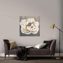 Art for the Home schilderij Roos - wit - 80x80 cm
