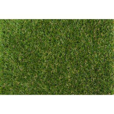 Grastapijt Allium 4m - Leen Bakker