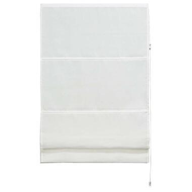 Vouwgordijn transparant wit 100x180 cm Leen Bakker