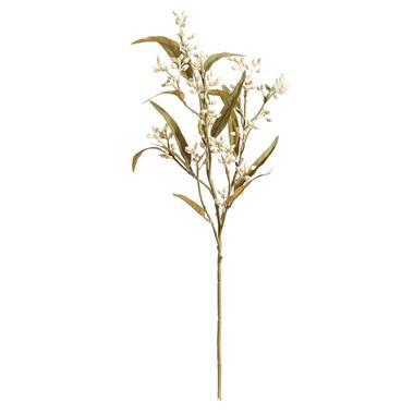 Eucalypthus bud spray - crème - 74 cm - Leen Bakker