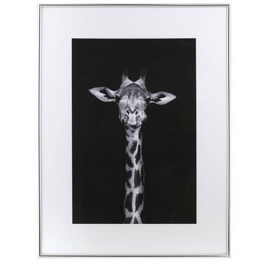 Fotolijst - zilver - 60x80 cm - Leen Bakker
