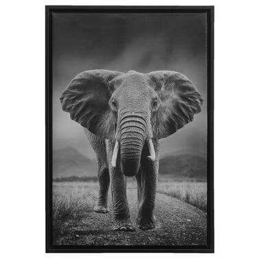 Schilderij Olifant - zwart - 64x44x4 cm - Leen Bakker