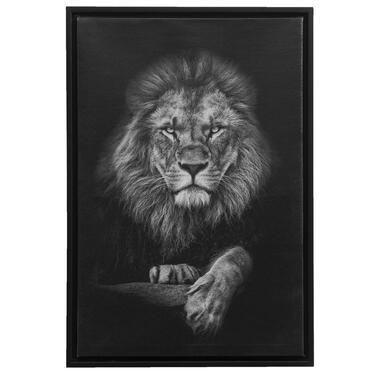 Schilderij Leeuw - zwart - 64x44x4 cm - Leen Bakker