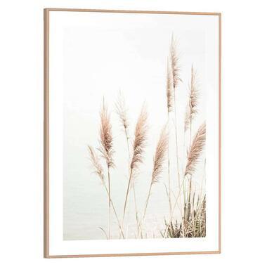 Poster met lijst Pampas Helmgras - 40x30 cm - Leen Bakker