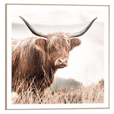 Poster met lijst Hooglander - 50x50 cm - Leen Bakker