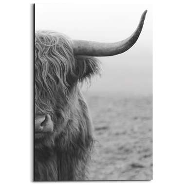 Wandpaneel Schotse Hooglander - zwart/wit - 60x90cm - Leen Bakker