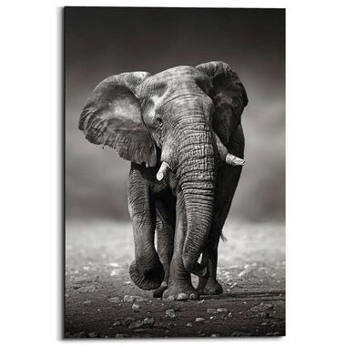 Wandpaneel Lopende Olifant - zwart/wit - 60x90cm - Leen Bakker