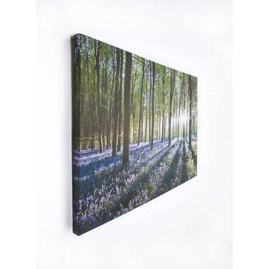 Art For The Home canvas schilderij Bloem - groen/paars - 70x100 cm