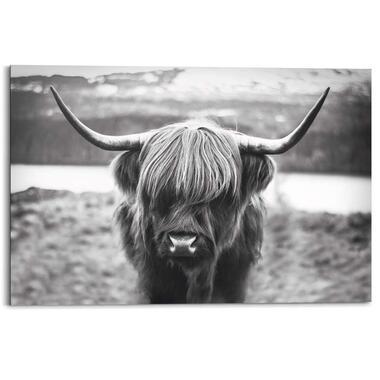 Wandpaneel Cattle - zwart/wit - 90x60 cm - Leen Bakker