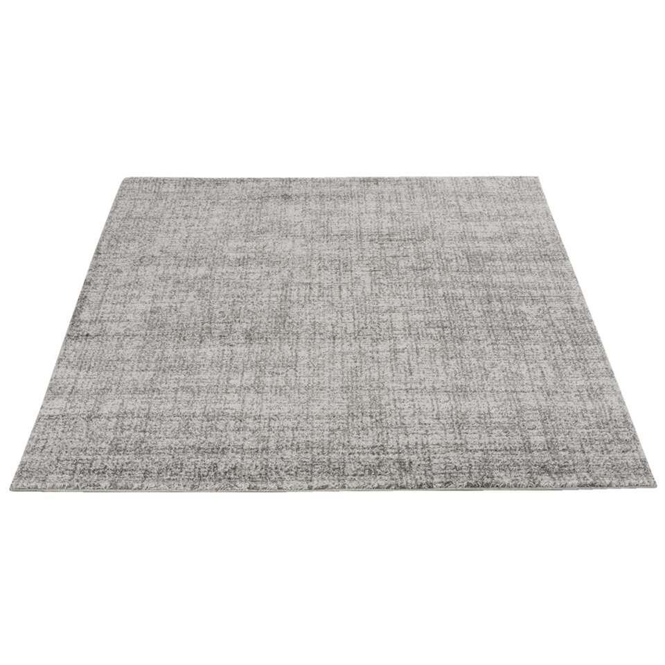 Vloerkleed Softness is een lekker zacht kleed met een stijlvolle zilvergrijze kleur. Het kleed is gemaakt van polypropyleen, afmeting 160x230 cm.