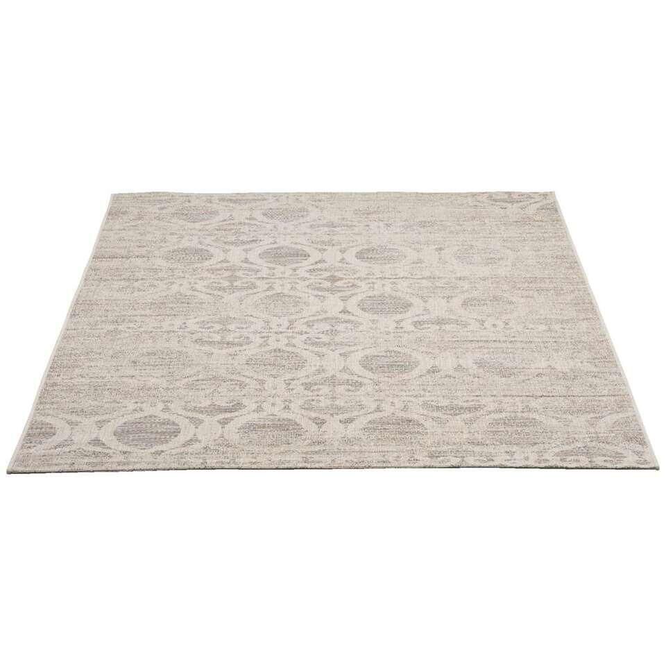 Vloerkleed Breeze is een sterk kleed met een stijlvolle grijze kleur. Het kleed is gemaakt van polypropyleen en heeft een afmeting van 160x230 cm.