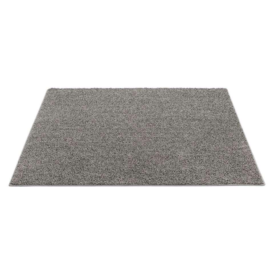 Vloerkleed Sfinx – grijs – 160×240 cm – Leen Bakker