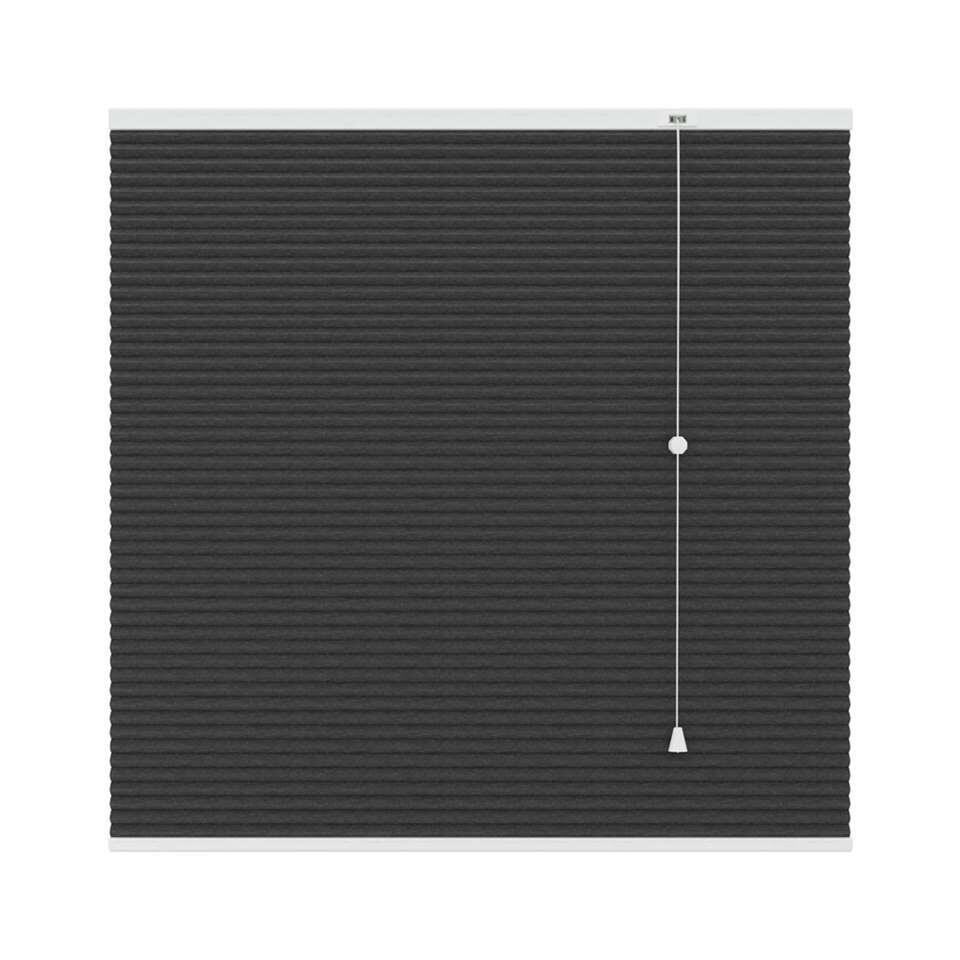 Plisségordijn duplistof verduisterend - antraciet - 80x180 cm - Leen Bakker