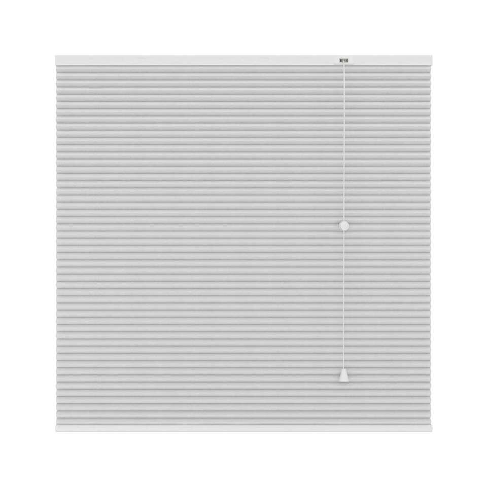Plisségordijn duplistof lichtdoorlatend - wit - 100x180 cm - Leen Bakker