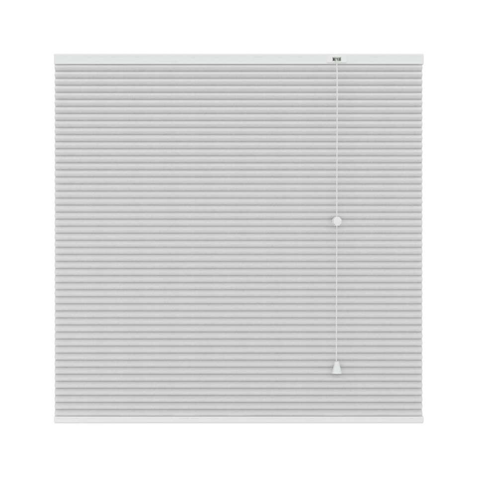 Plisségordijn duplistof lichtdoorlatend - wit - 140x220 cm - Leen Bakker