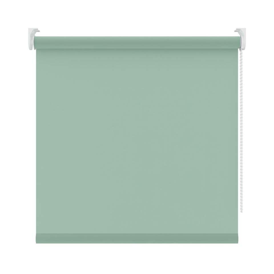 Rolgordijn lichtdoorlatend - lichtgroen - 90x190 cm - Leen Bakker