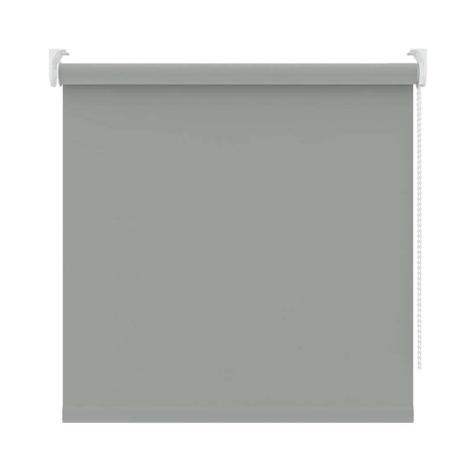 Rolgordijn verduisterend - muisgrijs - 120x190 cm - Leen Bakker