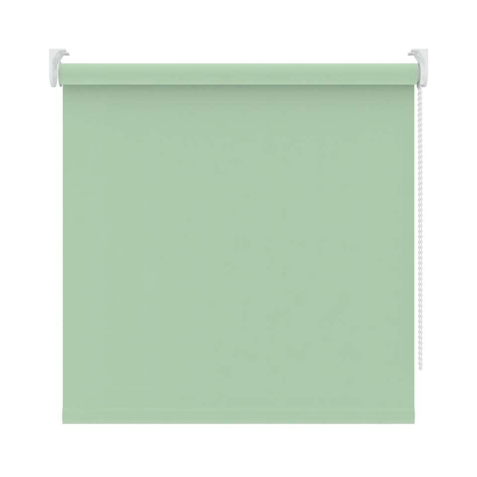 Rolgordijn verduisterend - lichtgroen - 180x190 cm - Leen Bakker