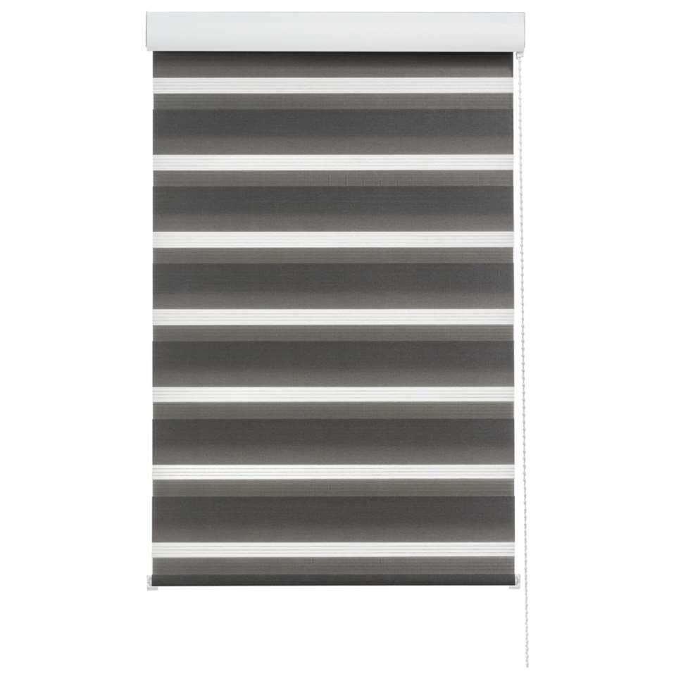 Roljaloezie lichtdoorlatend - antraciet - 150x160 cm - Leen Bakker