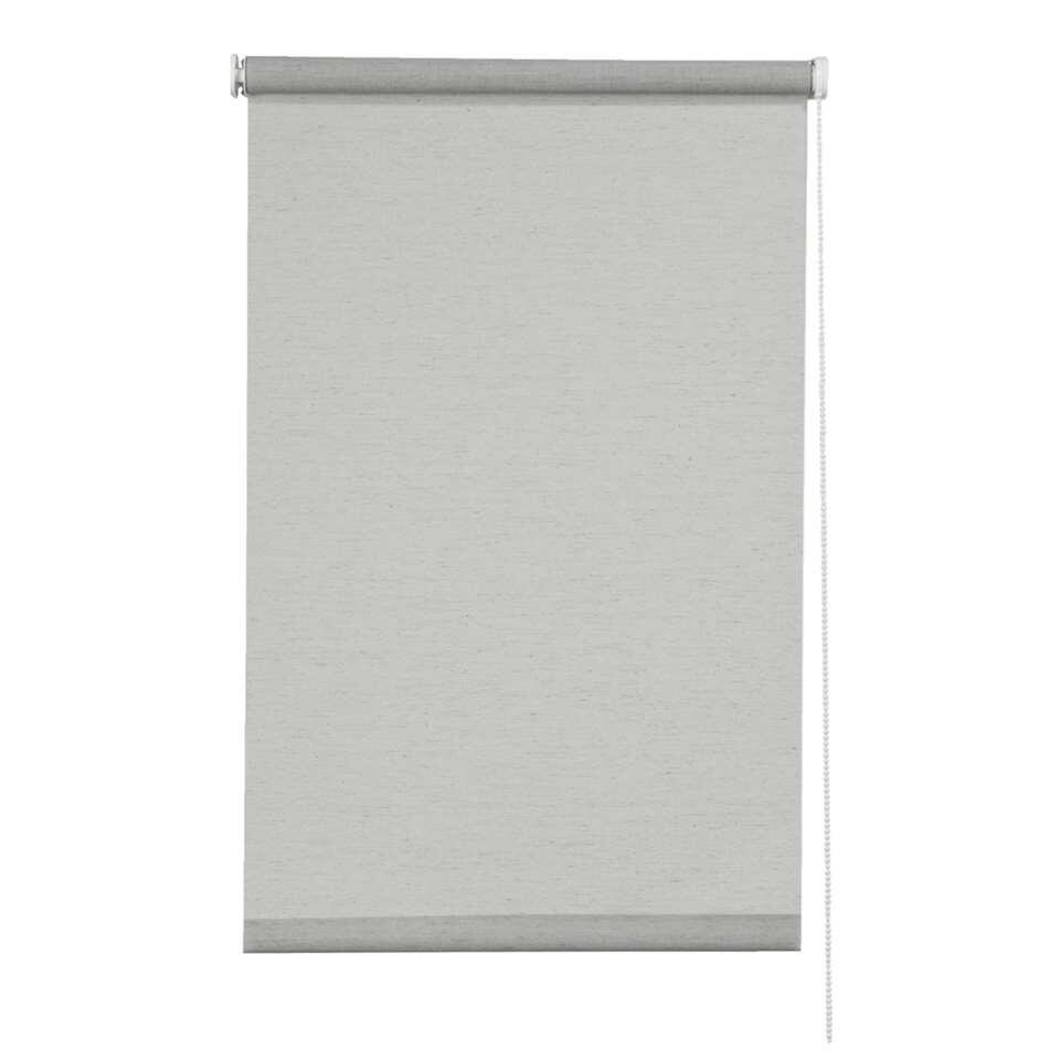 Rolgordijn lichtdoorlatend dessin - lichtgrijs - 60x190 cm - Leen Bakker