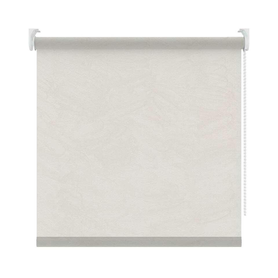 Rolgordijn lichtdoorlatend - wit/lichtgrijs - 120x190 cm - Leen Bakker