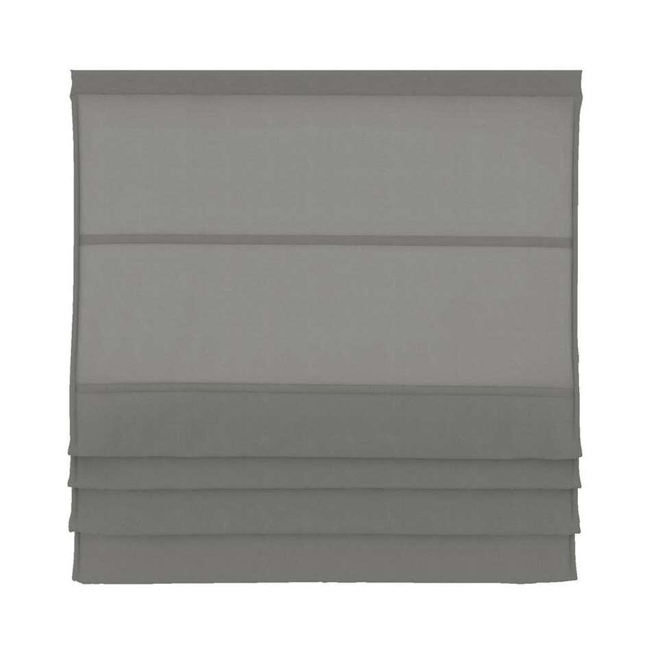 Vouwgordijn lichtdoorlatend - taupe - 100x180 cm - Leen Bakker