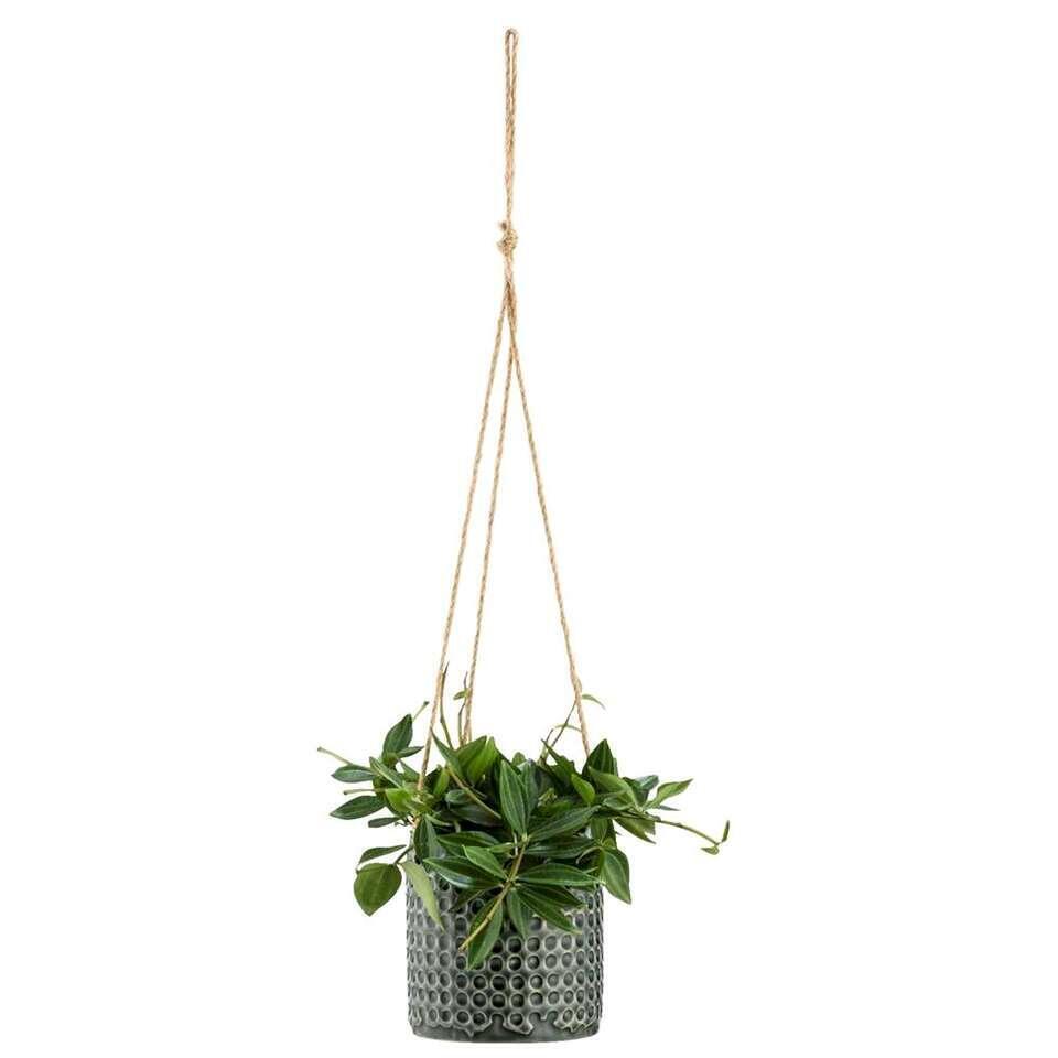 Bloempot hang Sophie - groen - 11,5xØ11 cm - Leen Bakker