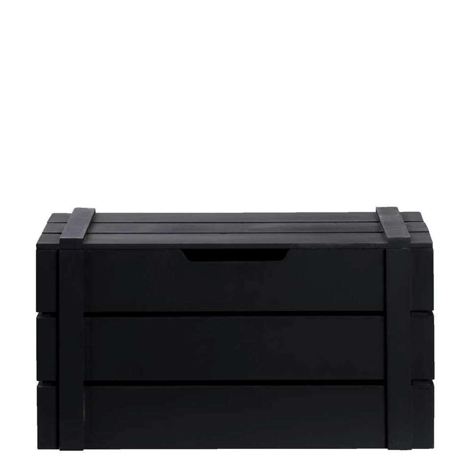 Kist Raaf - zwart - 42x24x23 cm - Leen Bakker