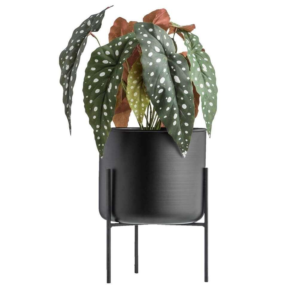 Bloempot op pootjes Niek - zwart - 26,5x20 cm