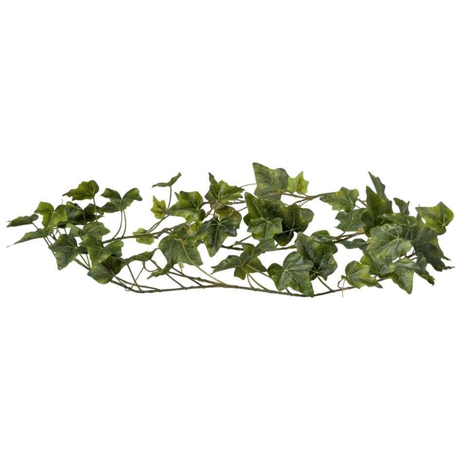 Klimop garland - groen - 180 cm - Leen Bakker
