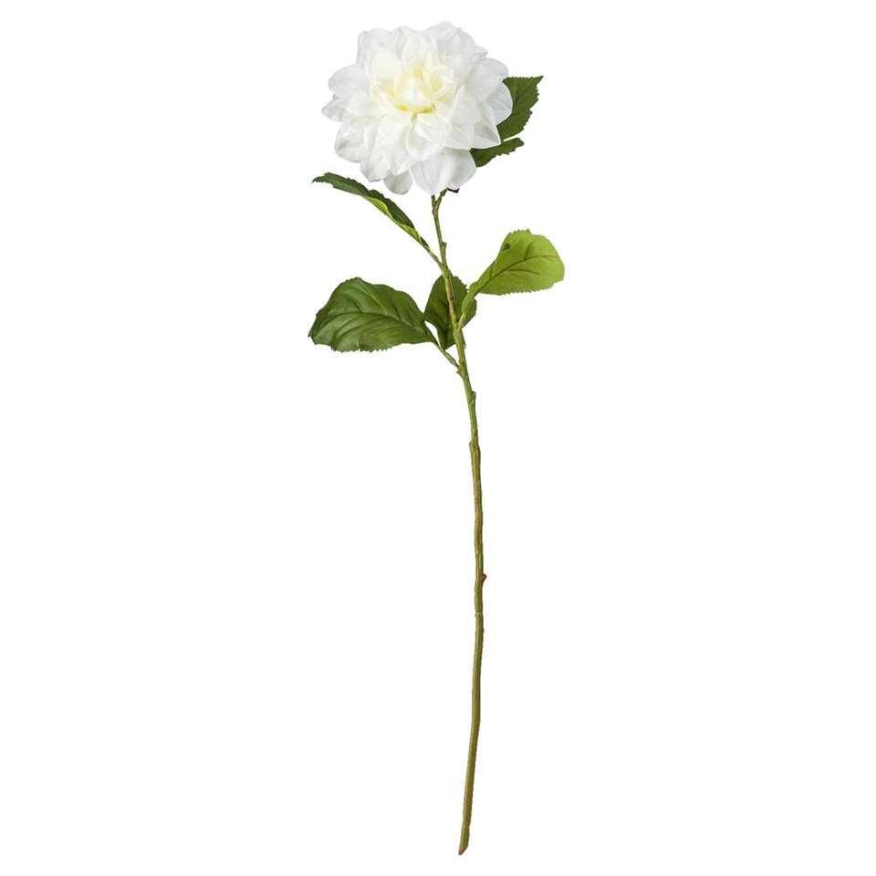 Dahlia - wit - 68 cm - Leen Bakker