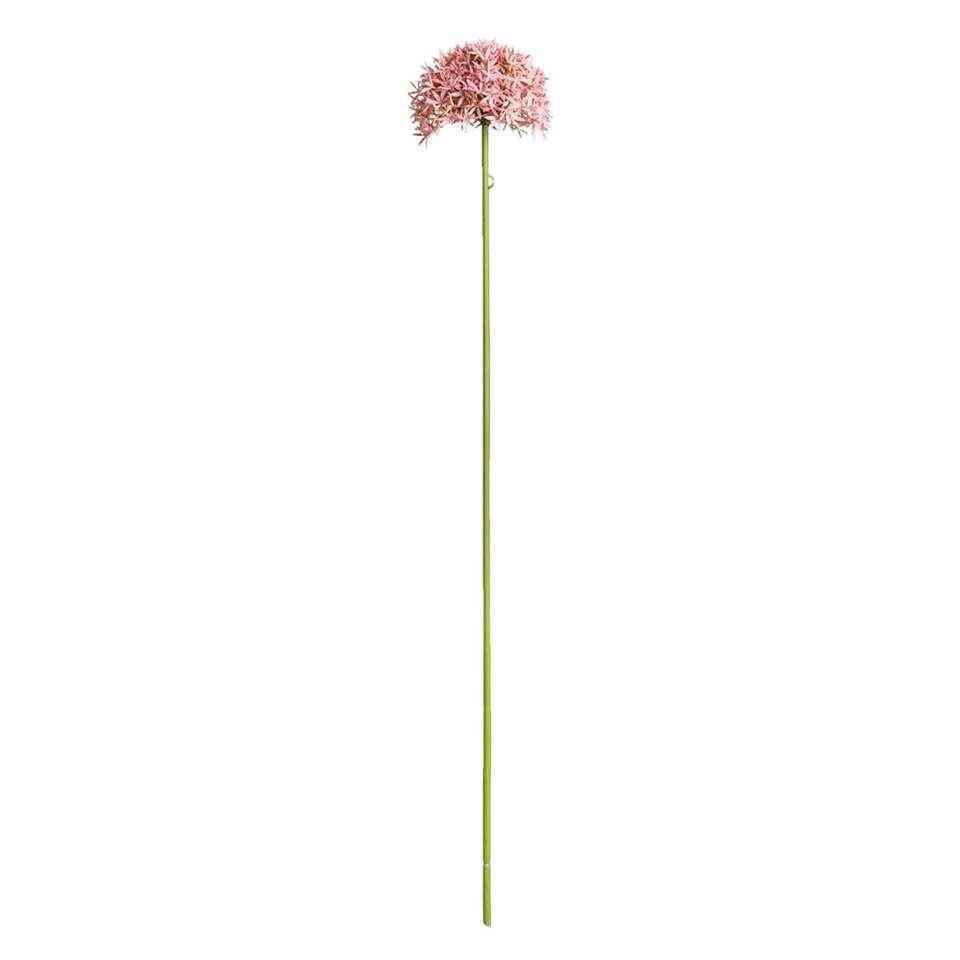 Allium tak – roze- 62 cm – Leen Bakker