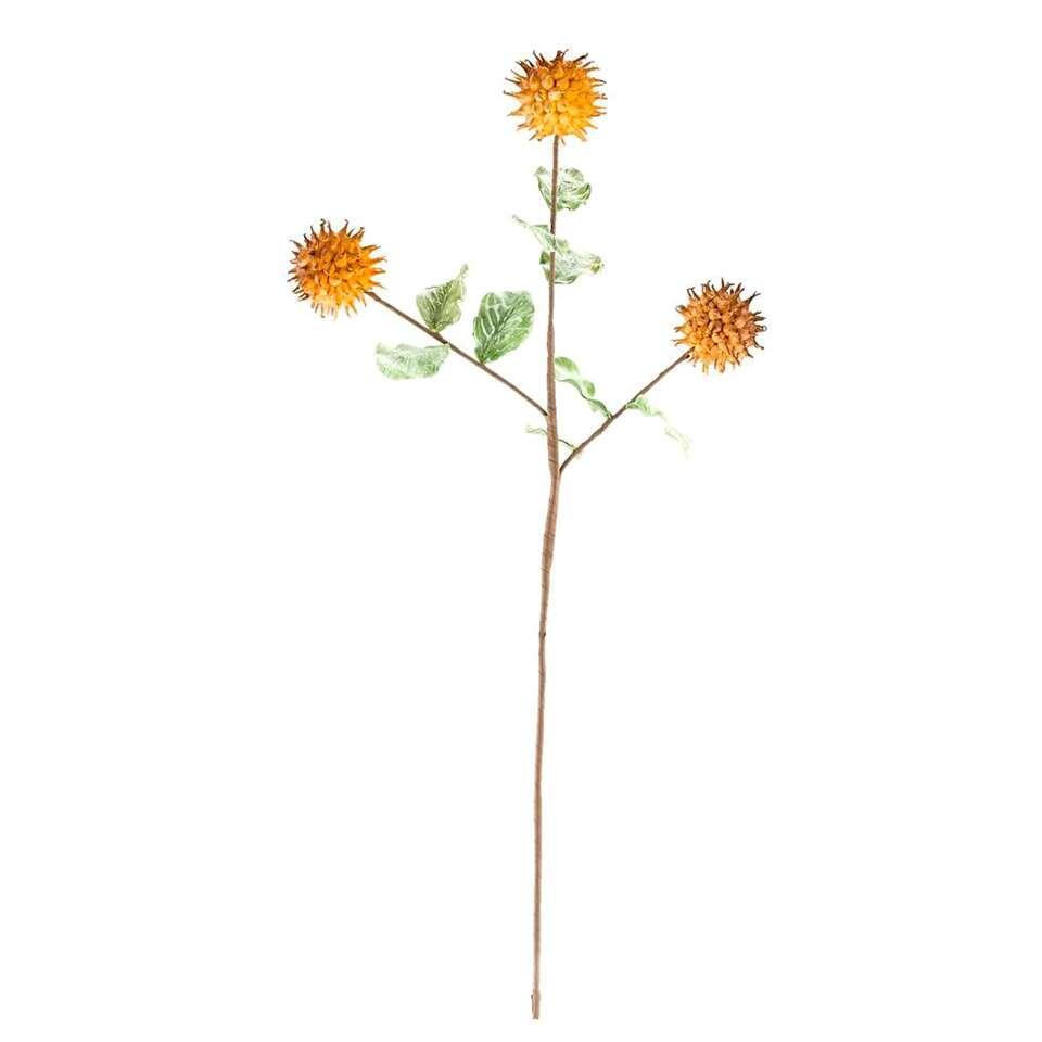 Disteltak - oranje - 93 cm - Leen Bakker