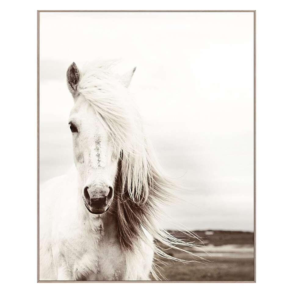 Schilderij Wit Paard – zwart/wit/bruin – 40×50 cm – Leen Bakker