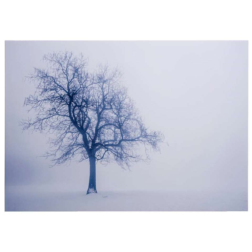 Canvas Winterboom - wit - 70x100 cm - Leen Bakker