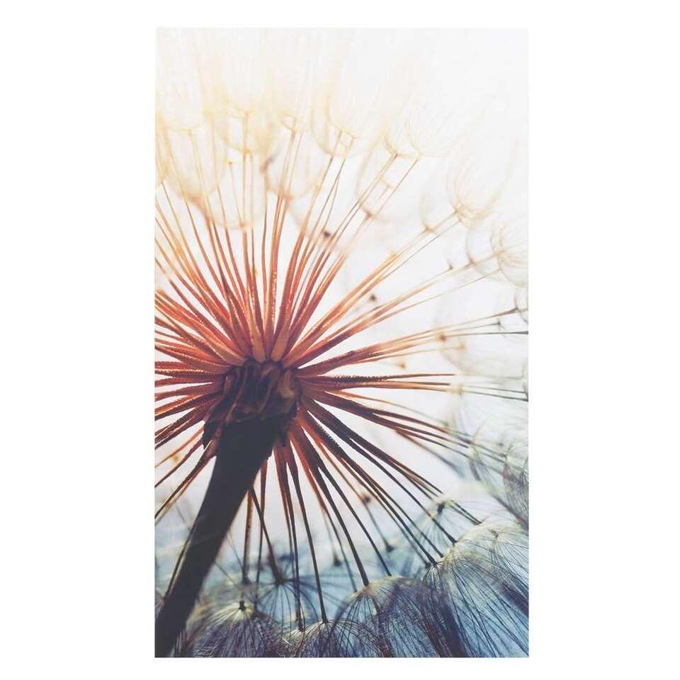 Decopaneel Paardenbloem - 70x118 cm - Leen Bakker