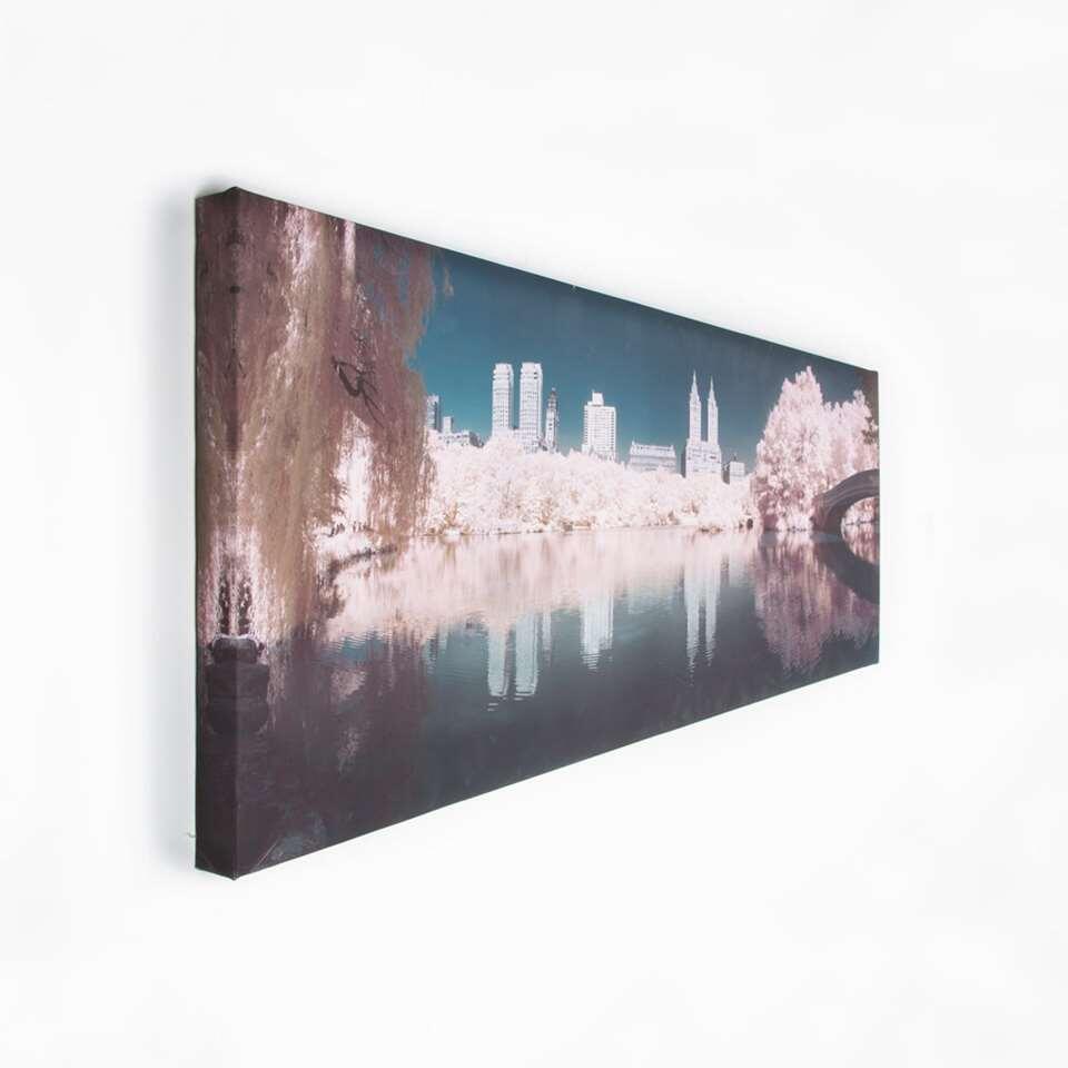Graham & Brown canvas Central Park - roze - 100x40 cm - Leen Bakker