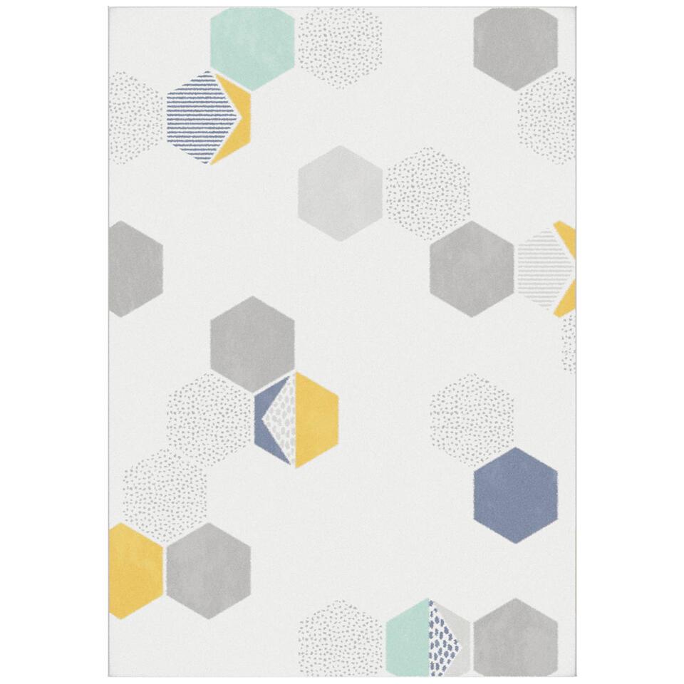 Vloerkleed Avenza in crème uitvoering heeft een trendy dessin met verfrissende kleuren. Dit kleed heeft een wollige look en een afmeting van 120x170 cm.