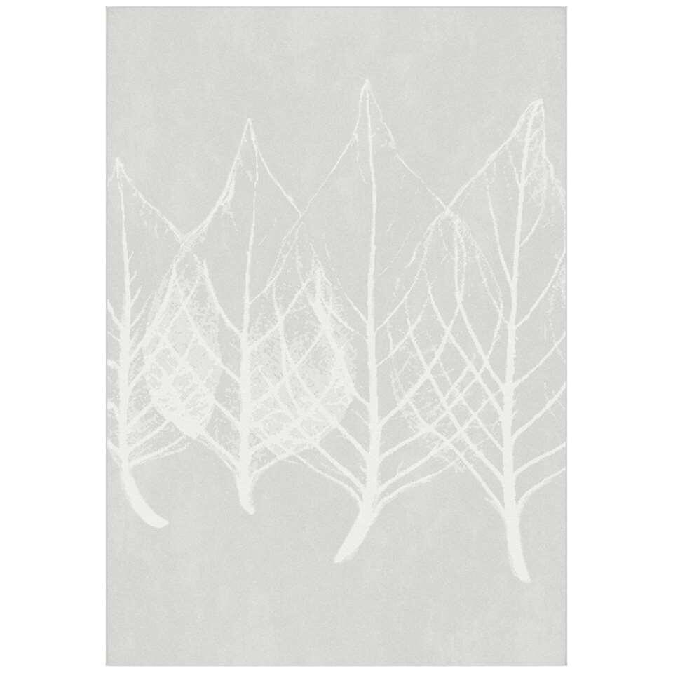 Vloerkleed Vadena - grijs - 160x230 cm - Leen Bakker