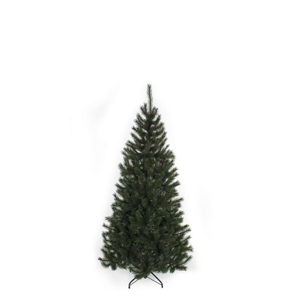 Black Box kerstboom Kingston – 155 cm – Leen Bakker