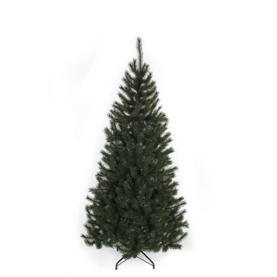 Black Box kerstboom Kingston - 215 cm - Leen Bakker