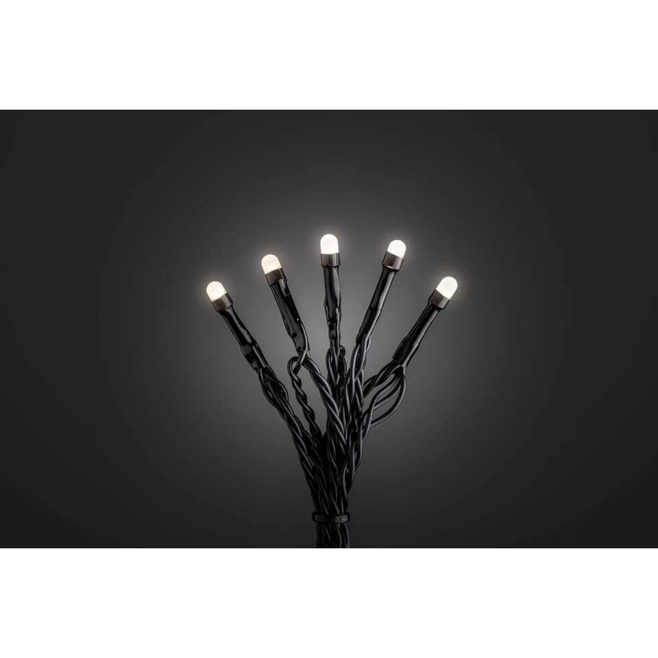 Konstsmide frost LED lichtsnoer - warm wit - Leen Bakker