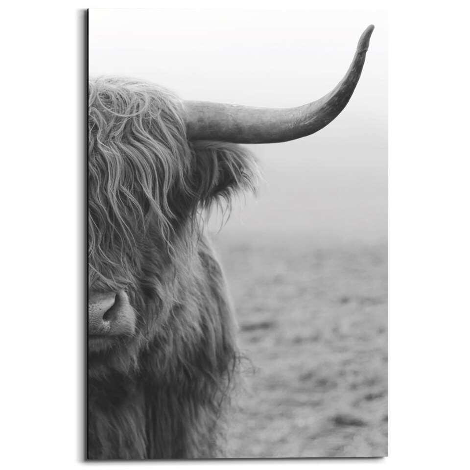 Wandpaneel Schotse Hooglander - zwart/wit - 60x90cm