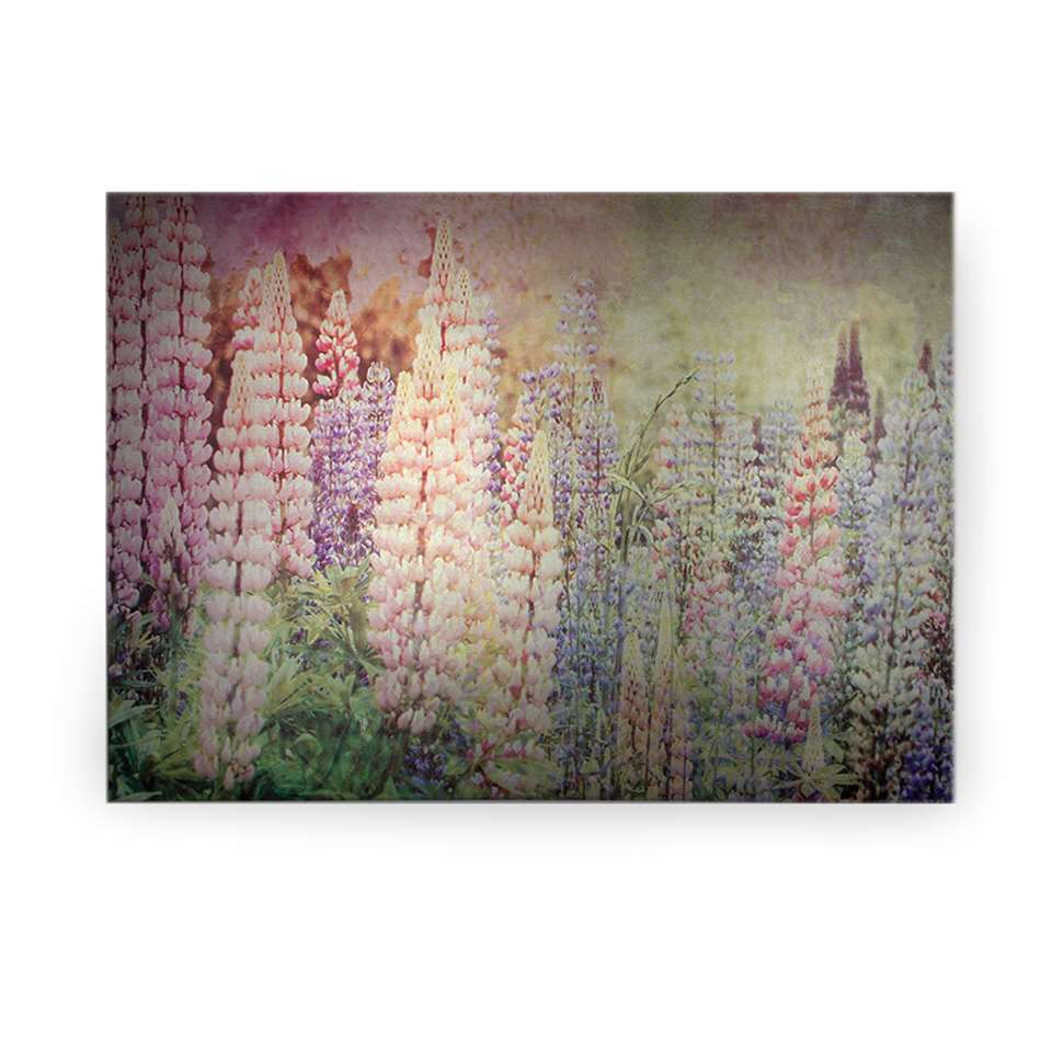 Art for the Home schilderij Ridderspoor - veelkleurig - 100x70 cm