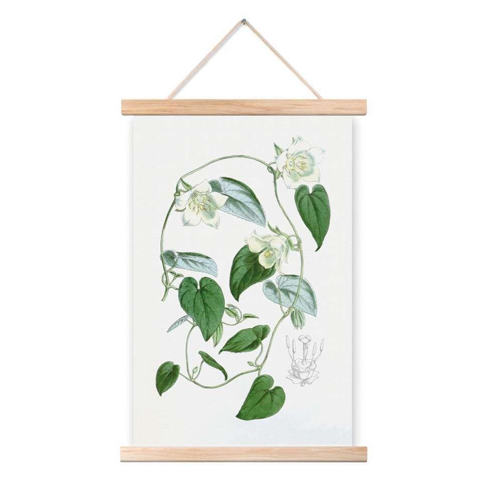 Art For The Home katoenen poster Botanisch – wit/groen – 40×60 cm – Leen Bakker