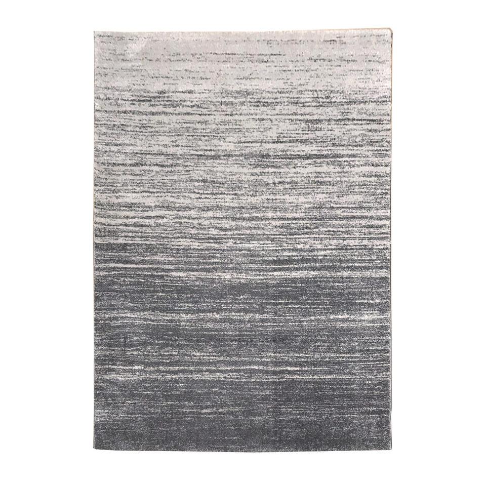Vloerkleed Sapri - lichtgrijs - 160x230 cm