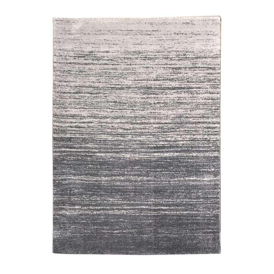 Vloerkleed Sapri - lichtgrijs - 200x290 cm